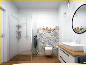 Стеклянная перегородка разграничивающая душевую и туалет в совмещенном санузле